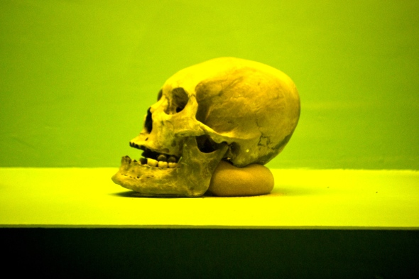 FYI: According to the Curator, this Skull shows that the old settlers of Butuan intended to flatten their forhead. The more flat and wide, the better.
